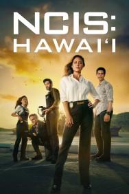 titta-NCIS: Hawai'i-online
